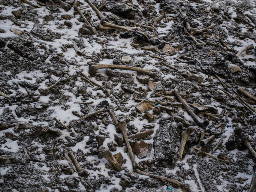 Text Box: Bones scattered near Roopkund lake (Source: Business Insider)